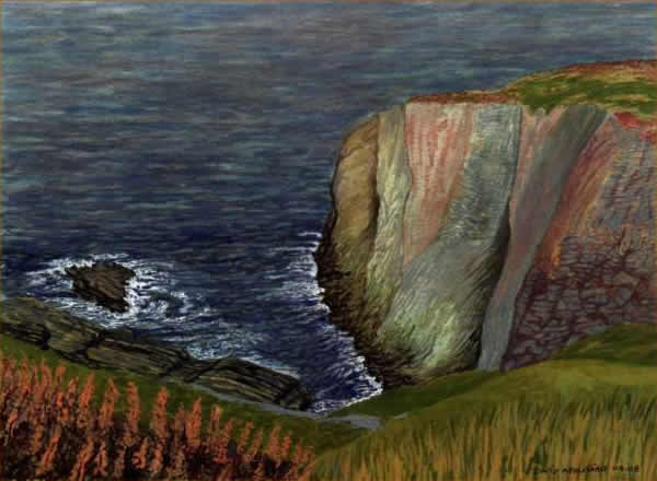 CLIFF TOPS, ANGLESEY painted by DAVID APPLEYARD